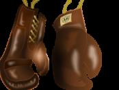 boxing-158519_960_720