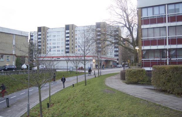 lång affär avsugning i Malmö