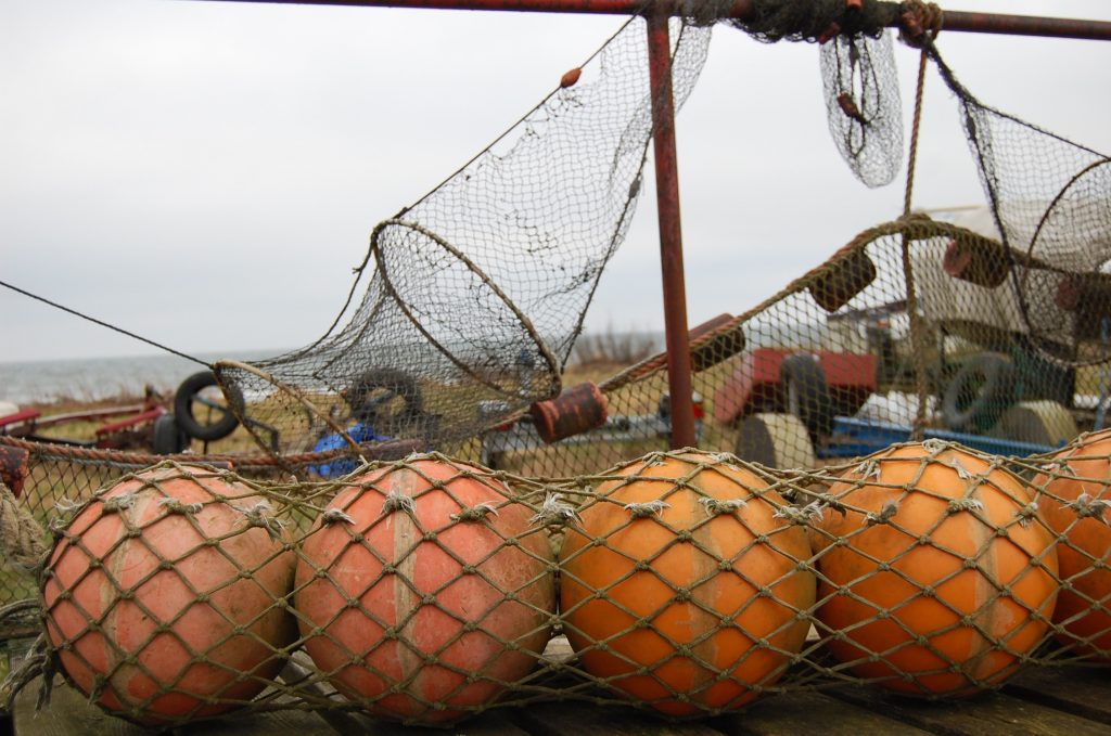 I Abbekås vittnar yrkesfiskare om både färre och magrare torskar i näten.