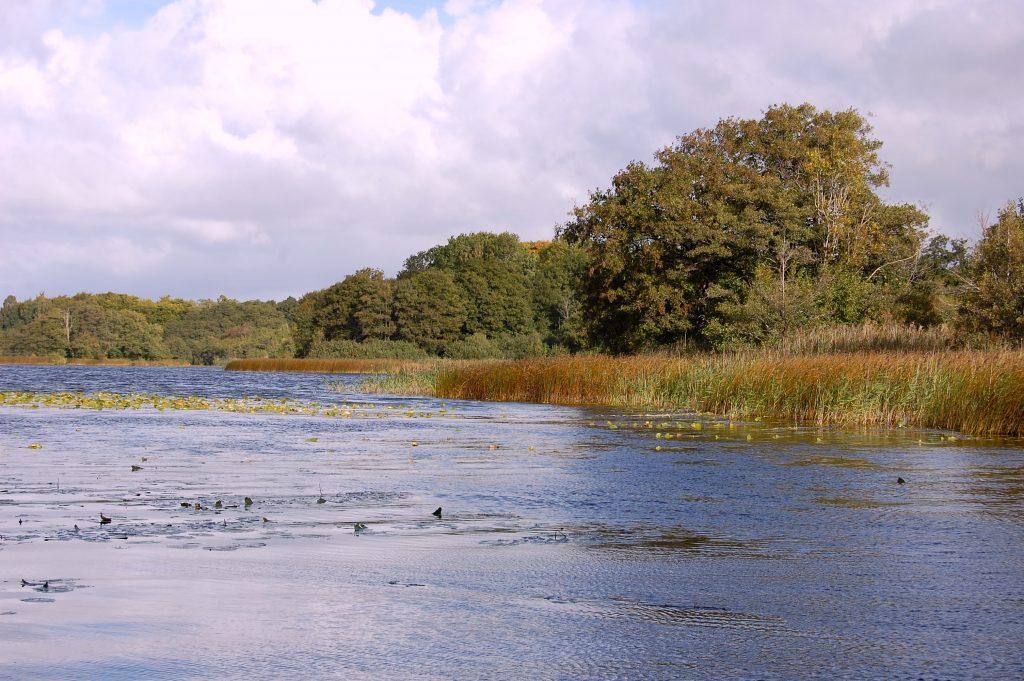 Höstdagen i Snogeholm bjuder på aktiviteter både på vatten och land.