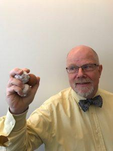 Johan Pettersson, miljöingenjör i Trelleborgskommun har funderat länge på vad det kan vara för bollar.