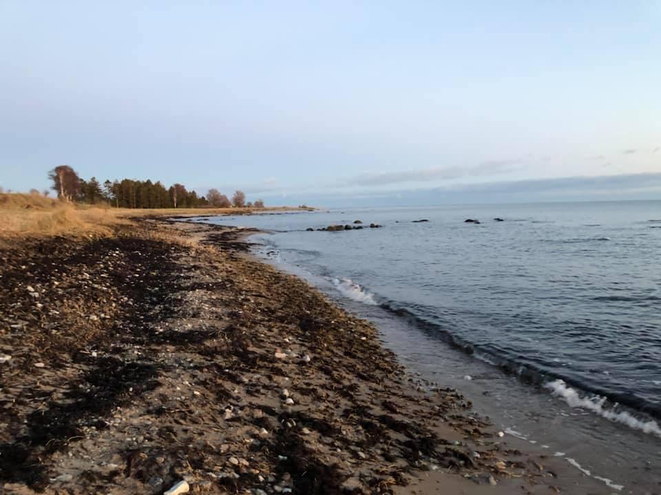 Ebba Fagerberg Drameus började själv plocka skräp under promenader längs med stranden i Abbekås. Nu hoppas hon att fler ska engagera sig.