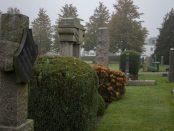 Skurups kyrkogård kommer snart att vara full med ljus. Foto: Nina Davidsson