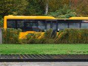abbekas buss