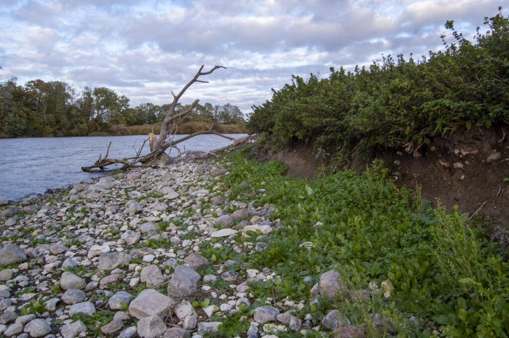 Öns västra sida är kraftigt påverkat av erosion.